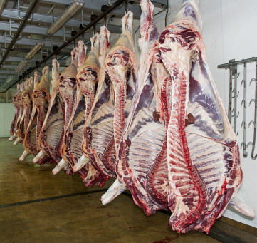 Abattoir B Riley & Sons bought out of administration