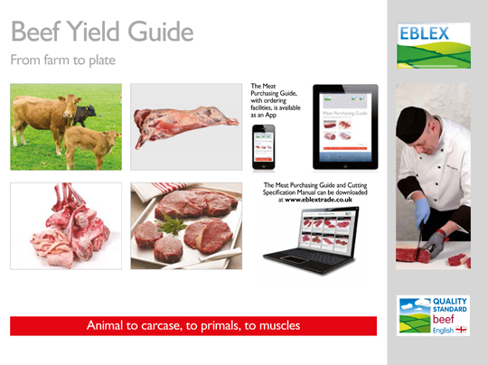 Aimed at the supply, processing and independent butchery sector, the Beef Yield Guide provides a detailed breakdown of beef carcase processing.
