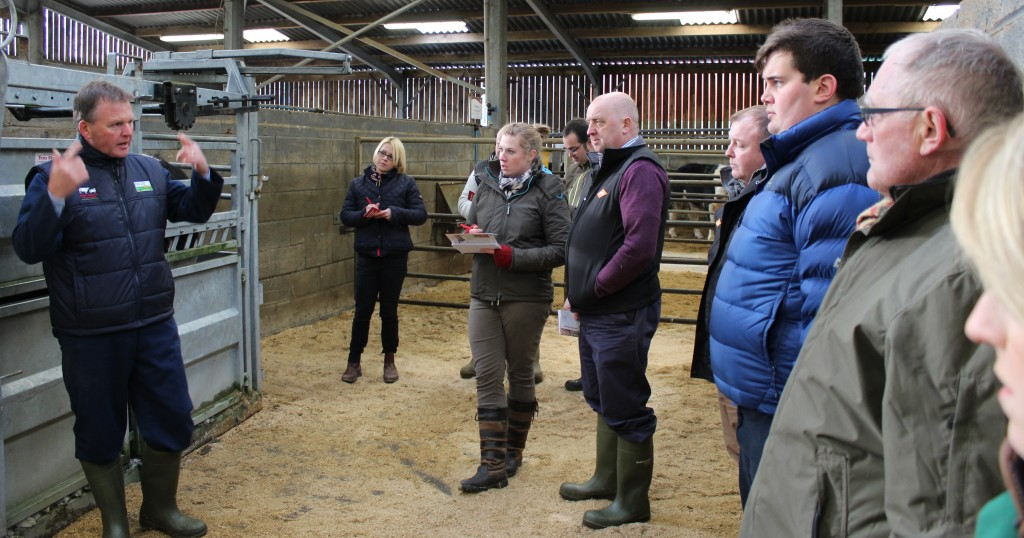 Staff from Jim Peet (Agriculture) Ltd attend a beef live to dead event at Dunbia's primary beef plant in Sawley