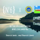 HCC to promote Welsh Lamb at Festival No.6