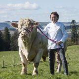 Scotch Beef PGI Campaign delivers positive results