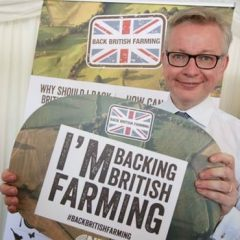 Michael Gove reinforces importance of a successful Brexit for agri-food