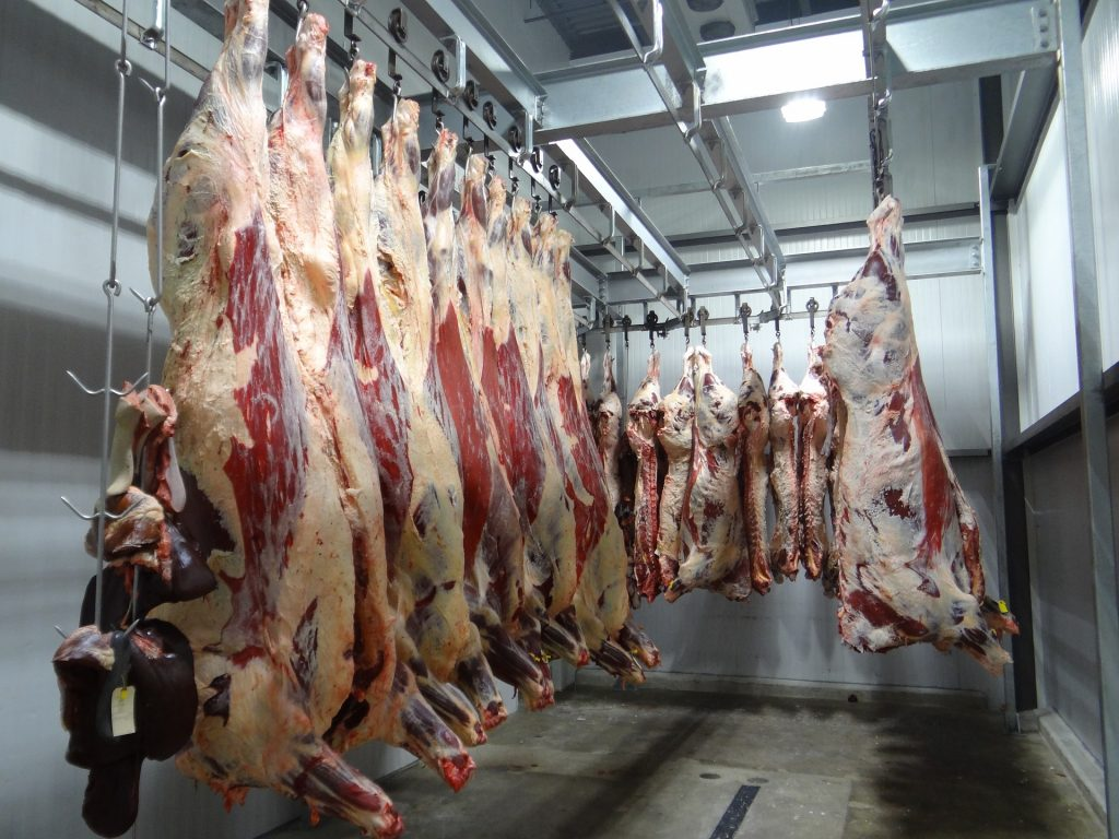 BVA and the RSPCA urge the UK Government to change its slaughter legislation.
