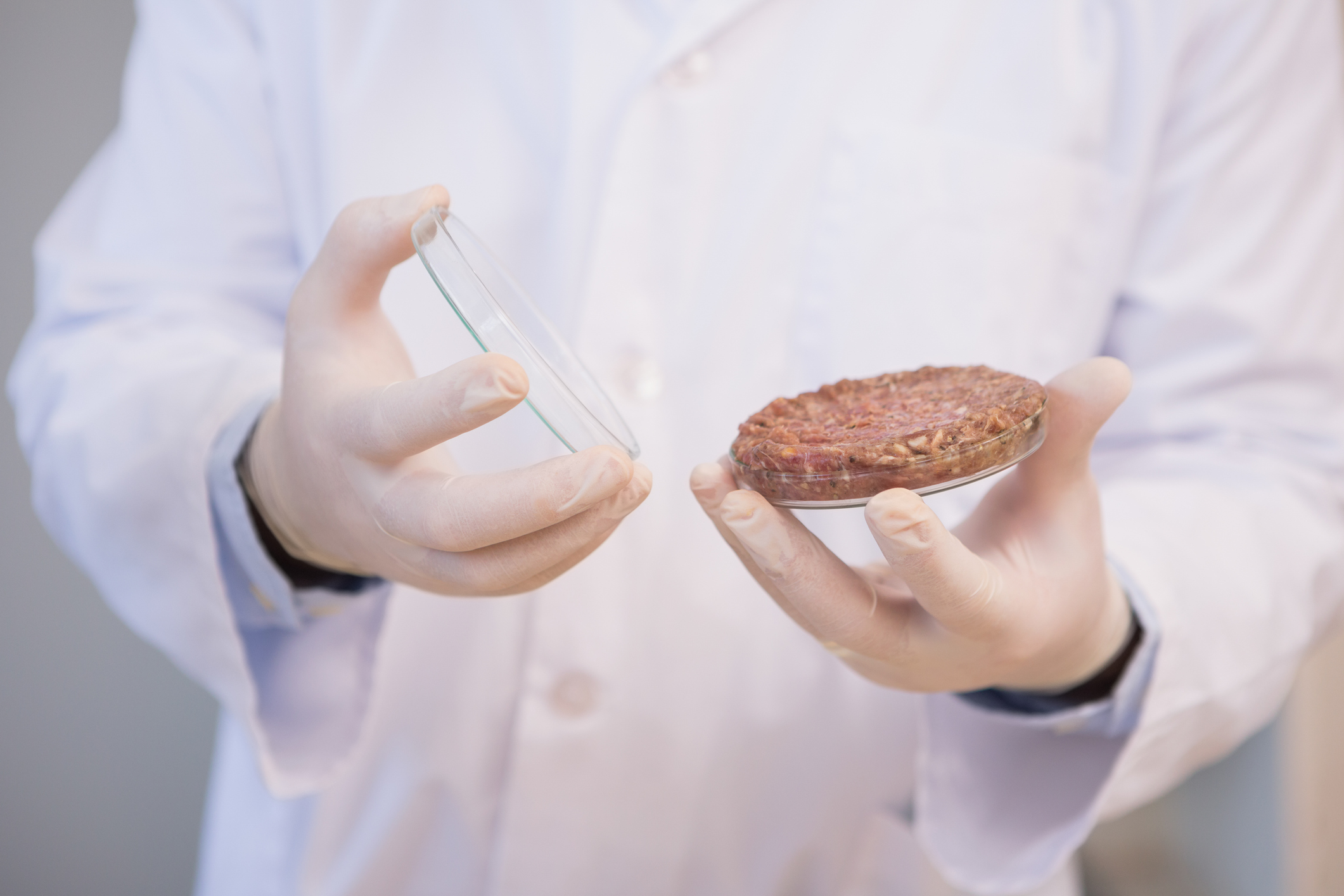 cultured meat The dutch scientist who served up the world's first laboratory-grown beef burger  says cultured meat could spell the end of traditional cattle.