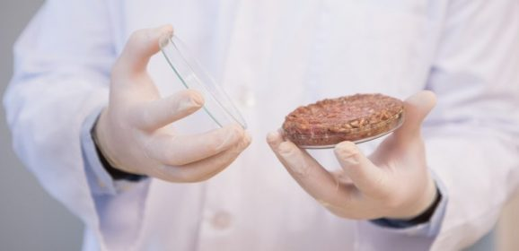 U.S. moves forward with cell-grown 'meat'