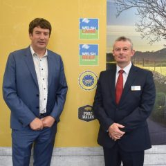 Welsh lamb scores good traceability marks in study