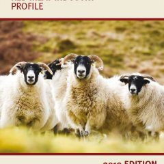 QMS publication highlights importance of red meat industry to Scotland's economy