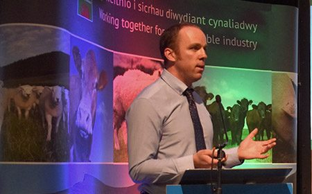 Major new research to strengthen sustainability of Welsh farming