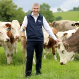 LMC instrumental in securing Covid-19 support package for the red meat sector