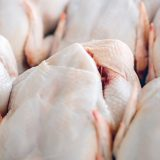 Processed poultry outperforms key meat categories in last 12 weeks