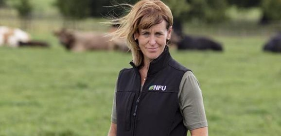 NFU welcomes Trade and Agriculture Commission report