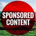 Sponsored Content - Bord Bia