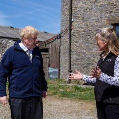 Great British Beef Week can help build Britain's food brand